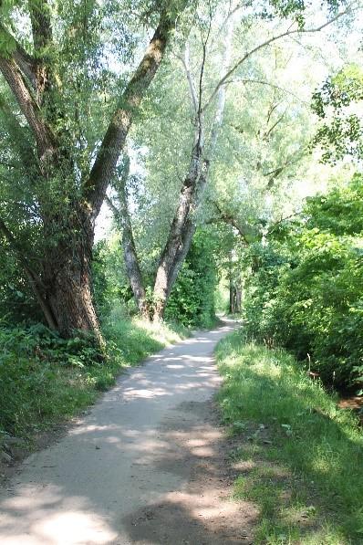 A stroll along Dorfbach. Photo Brian Vaughn