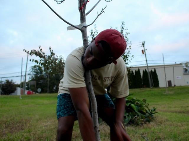 planting-1